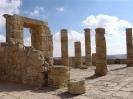 avdat - citta' nabatea