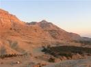 oasi di Ein Gedi
